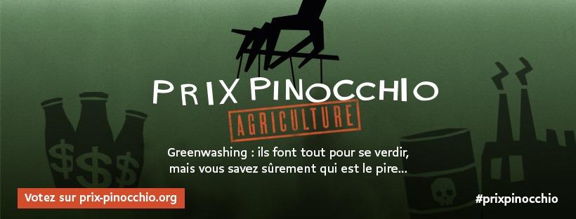 Pirx Pinocchio 2020