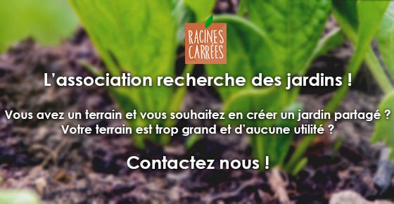 Plantons des jardins partagés avec Racines Carrées !